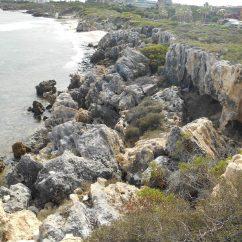 Coastal Hazards Mitigation