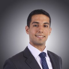 Shahin Falahati, Associate / Geotechnical Engineer, Douglas Partners